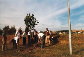 Haus bauen, Baum pflanzen, ... 1985